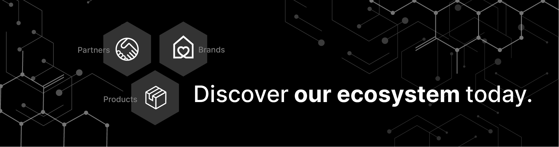 Xylos Ecosystem Banner HP